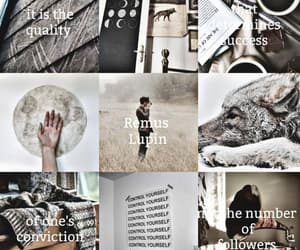 aesthetic, remus lupin, and wizarding world image