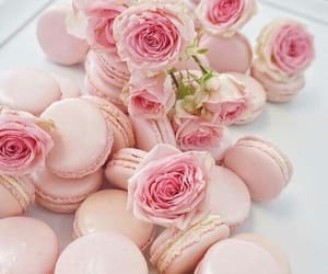 flowers, rose, and macaron image