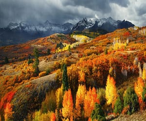 autumn colors, blink182, and colorado image
