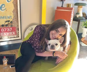 dog and lily collins image