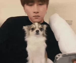 gif, kihyun, and jooheon image