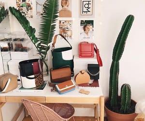 cactus, interior, and wood image