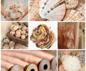 eggs, pink, and shells image