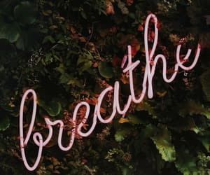 wallpaper, breathe, and green image