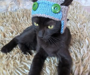 etsy, handmade, and cat accessories image