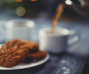 biscuit and gif image