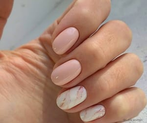 nails, image, and manicure image