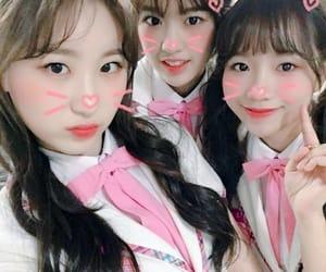 yuri, izone, and yujin image