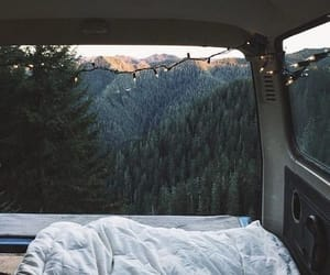 travel, nature, and forest image