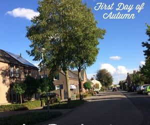 autumn, photograph, and day 1 image