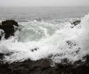 article, poems, and sea image