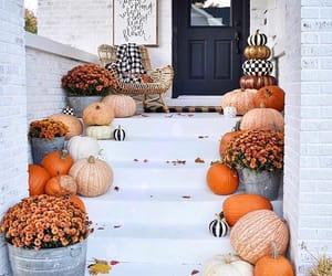 pumpkin, autumn, and cozy image