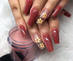 flower, flowers, and manicure image