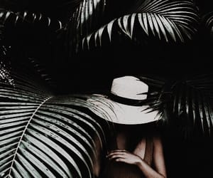 aesthetic, forest, and jungle image