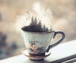 cup, dreamy, and trees image