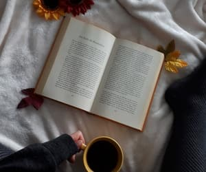 autumn, read, and reading image