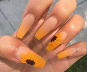 nails, sunflower, and acrylic image