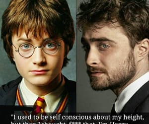 actor, film, and hogwarts image