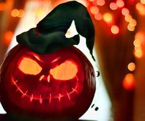 autumn colors, pumpkin, and tumblr image