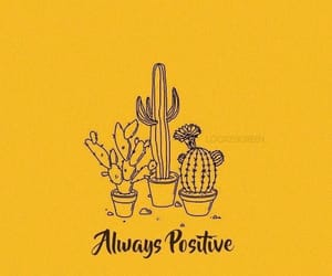 yellow, cactus, and wallpaper image