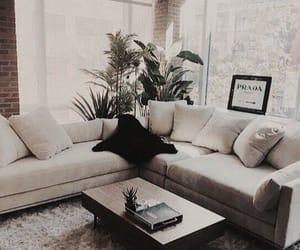 decor, goals, and interior image
