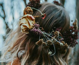 autumn, photography, and wreath image