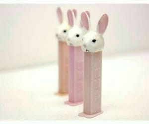 baby, sugar, and bunny image