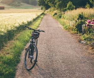 bicycle, country life, and country side image
