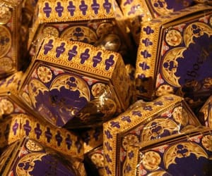 harry potter and chocolate frogs image