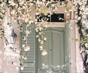 flowers and door image