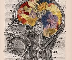 art, flowers, and brain image