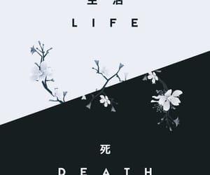 wallpaper, life, and death image