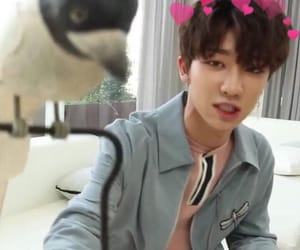 photobooth, Seventeen, and minghao image