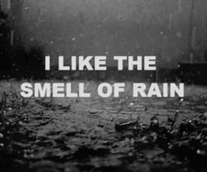 rain, smell, and quotes image