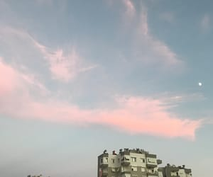 moon, pink, and turkey image