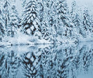 lake, nature, and snow image