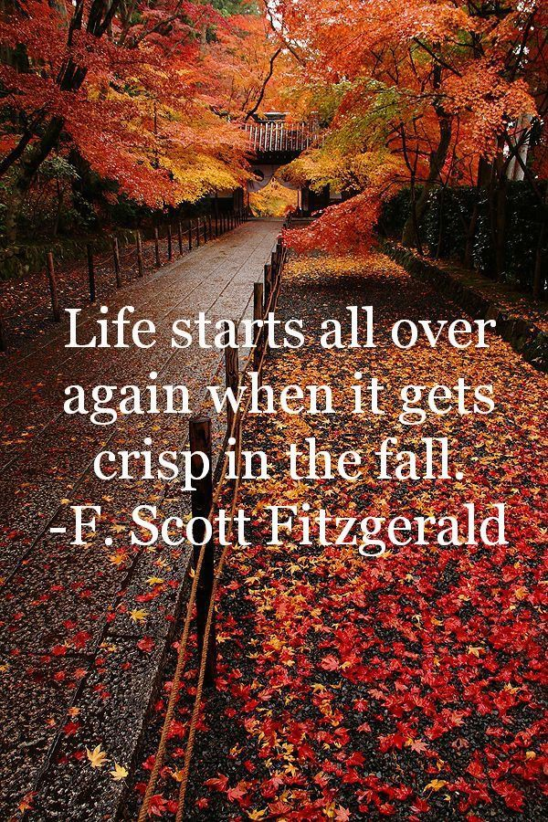 It\'s the first day of fall!! Happy Fall Yall!