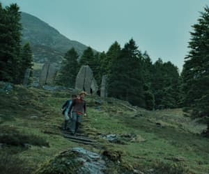 film, nature, and harry potter image