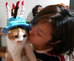 cat person, mamamoo wheein, and wheein image