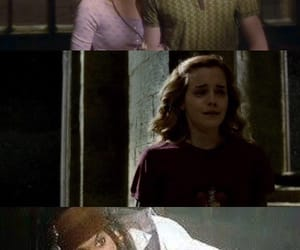 hermione, jack sparrow, and meme image