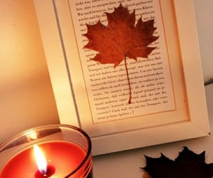 autumn, fall is here, and cozy image