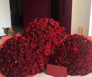 bouquets, red, and roses image