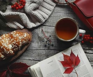 gif, autumn, and book image
