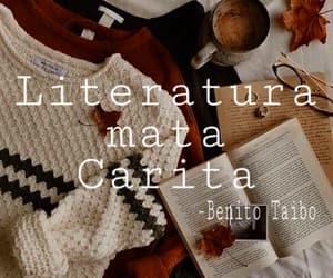 books, literatura, and lector image