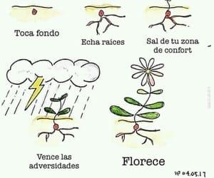 flor, vida, and florecer image