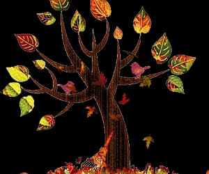 autumn, color, and gif image