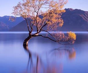 beauty, hill, and lake image