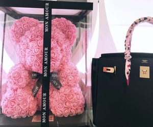 bear and luxury image