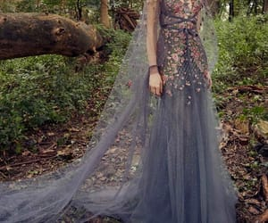 fairytale, style, and dess image