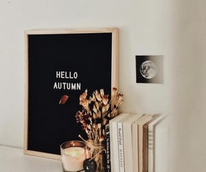autumn, fall, and books image